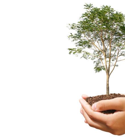 多治見セミナー,保険,資産運用,投資,子育て